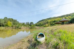 Mandevu Cottage | Falls Fish Farm | Destination Photography